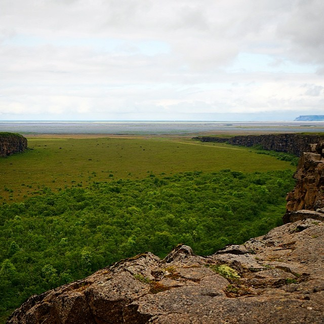Standing on the #cliffs of Aspyrgi, looking out toward the #ocean. #iceland