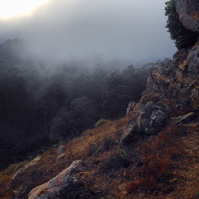 First day in SF, #bouldering in Glen Canyon as a wall of fog starts rolling in. I thought it was smoke from a fire!