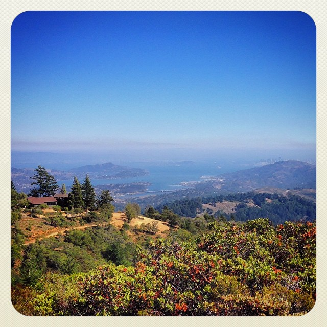 Seriously, #california? Just another Sunday hike near the east peaks of Mt. Tamalpais. ️
