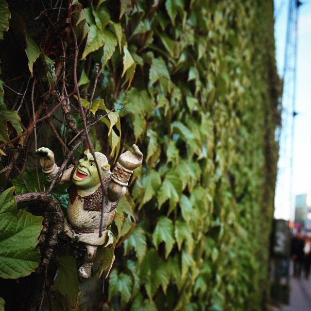 Spotted Shrek caught in the weeds on the streets of Copenhagen. #travel