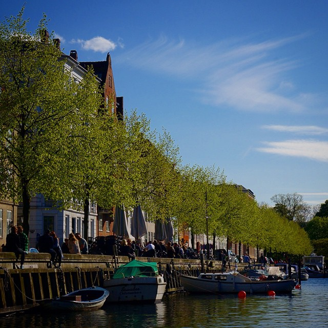 The beautiful canals in Copenhagen, lined with people hanging out on a gorgeous day. #travel #denmark #copenhagen